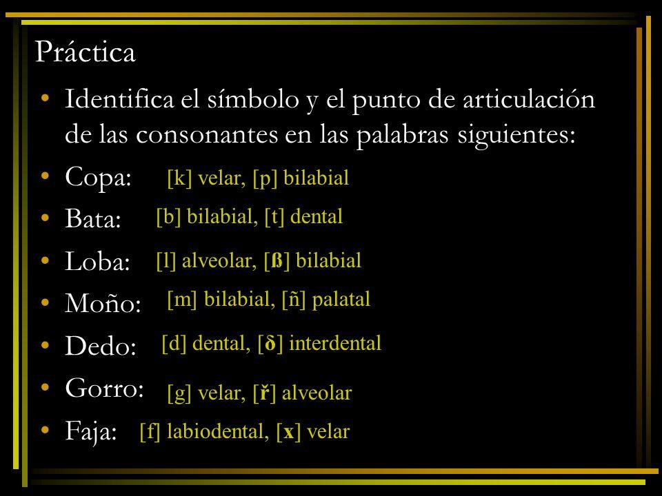 Práctica Identifica el símbolo y el punto de articulación de las consonantes en las palabras siguientes: Copa: Bata: Loba: Moño: Dedo: Gorro: Faja: [k