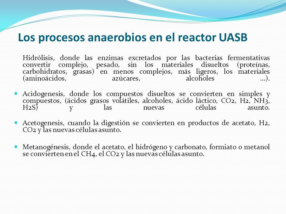 Los procesos anaerobios en el reactor UASB Hidrólisis, donde las enzimas excretados por las bacterias fermentativas convertir complejo, pesado, sin lo