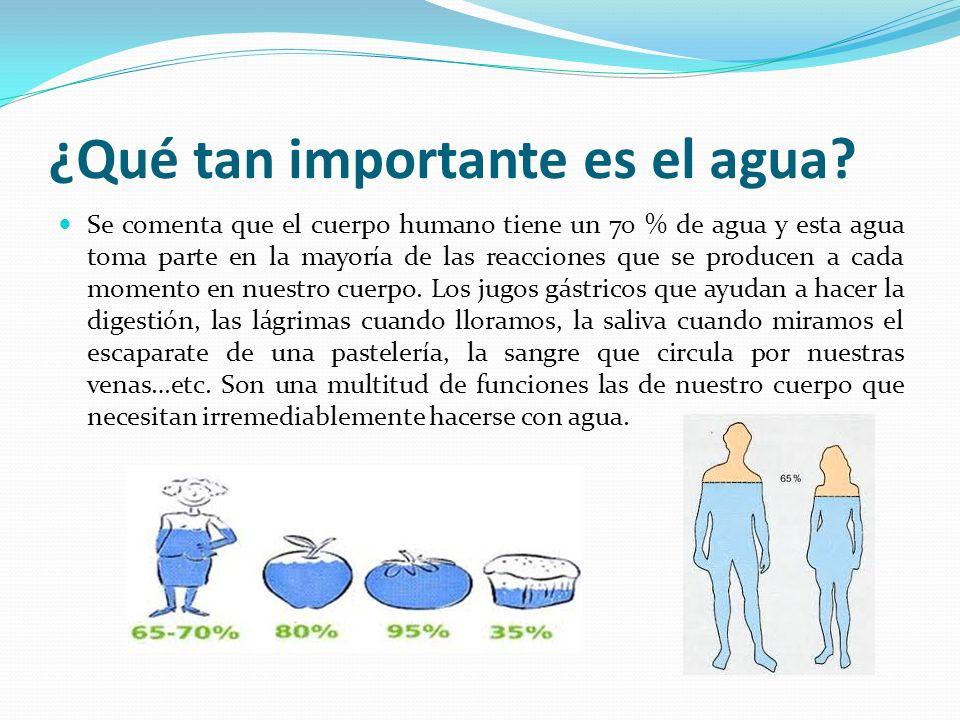 ¿Qué tan importante es el agua? Se comenta que el cuerpo humano tiene un 70 % de agua y esta agua toma parte en la mayoría de las reacciones que se pr