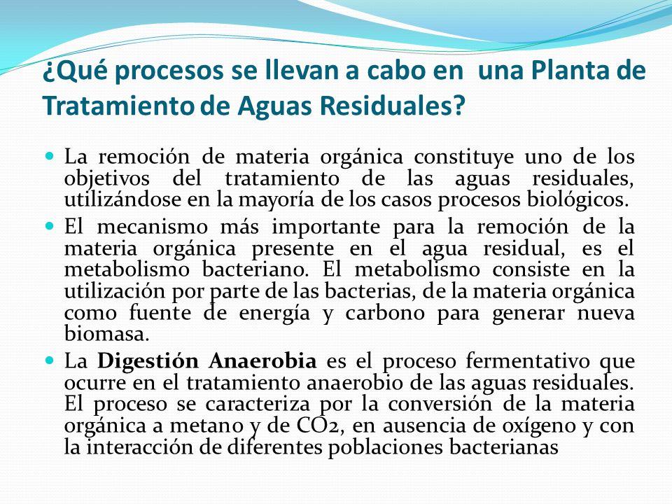 ¿Qué procesos se llevan a cabo en una Planta de Tratamiento de Aguas Residuales? La remoción de materia orgánica constituye uno de los objetivos del t
