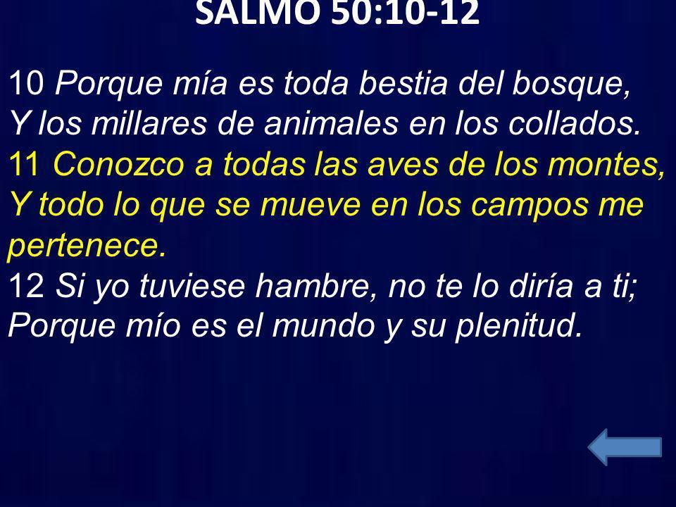 SALMO 50:10-12 10 Porque mía es toda bestia del bosque, Y los millares de animales en los collados. 11 Conozco a todas las aves de los montes, Y todo