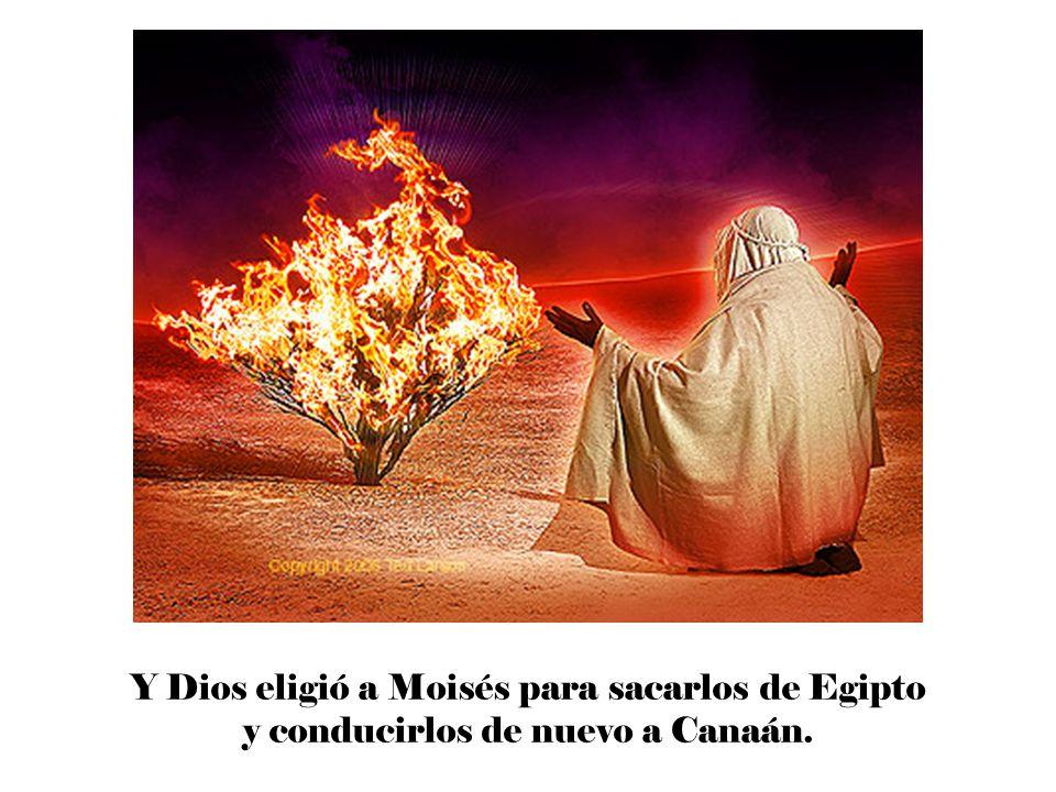 El día señalado por Moisés, los israelitas sacrificaron un cordero, lo asaron y lo comieron por la noche.