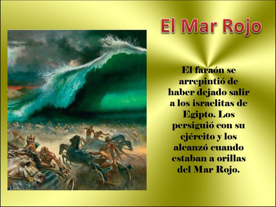 El faraón se arrepintió de haber dejado salir a los israelitas de Egipto. Los persiguió con su ejército y los alcanzó cuando estaban a orillas del Mar