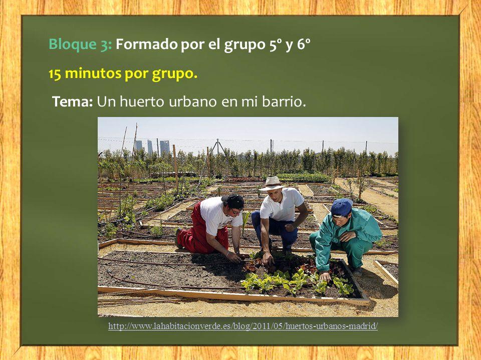 Bloque 3: Formado por el grupo 5º y 6º 15 minutos por grupo. Tema: Un huerto urbano en mi barrio. http://www.lahabitacionverde.es/blog/2011/05/huertos