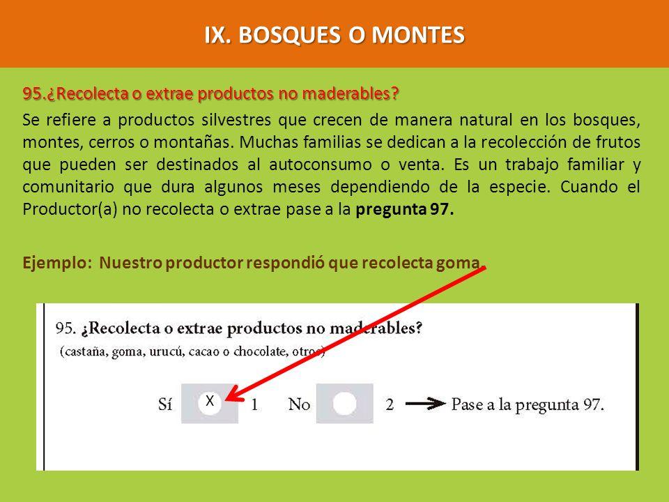 IX. BOSQUES O MONTES 95.¿Recolecta o extrae productos no maderables? Se refiere a productos silvestres que crecen de manera natural en los bosques, mo