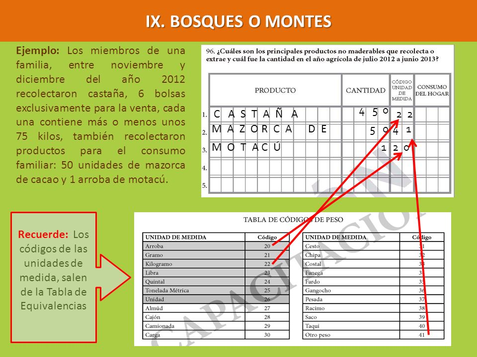 Ejemplo: Los miembros de una familia, entre noviembre y diciembre del año 2012 recolectaron castaña, 6 bolsas exclusivamente para la venta, cada una c