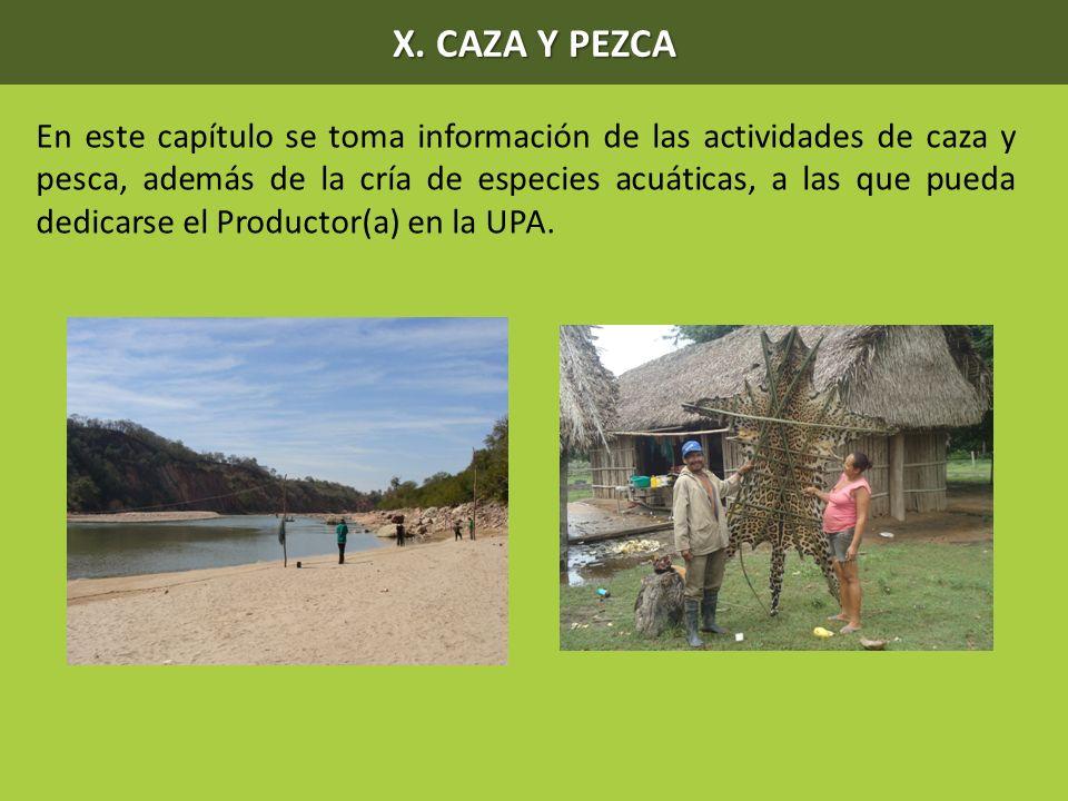 X. CAZA Y PEZCA En este capítulo se toma información de las actividades de caza y pesca, además de la cría de especies acuáticas, a las que pueda dedi