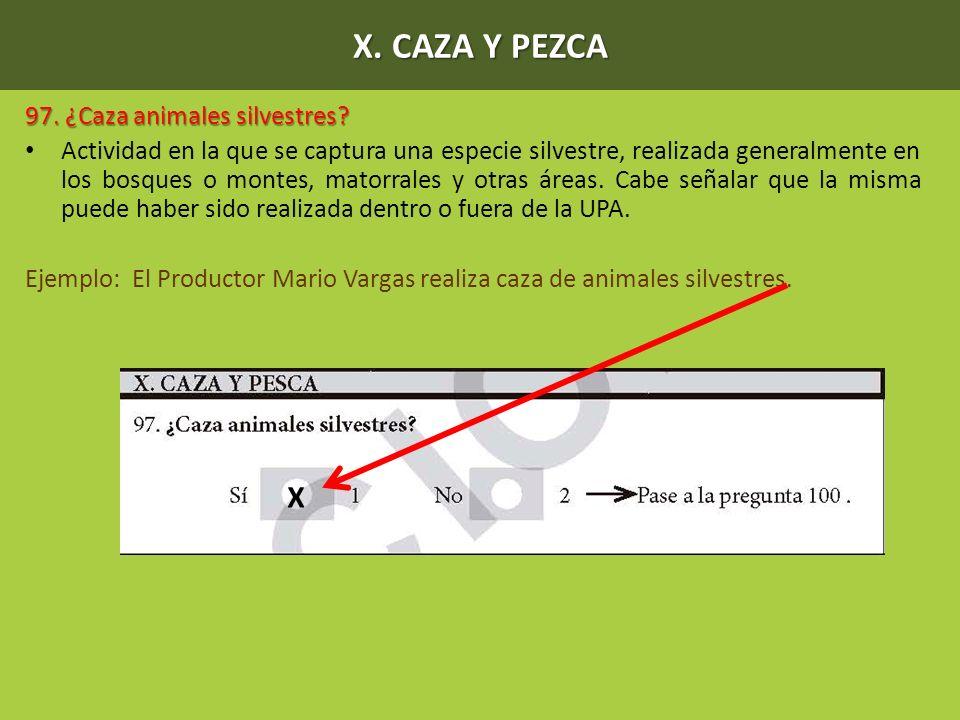 X. CAZA Y PEZCA 97. ¿Caza animales silvestres? Actividad en la que se captura una especie silvestre, realizada generalmente en los bosques o montes, m