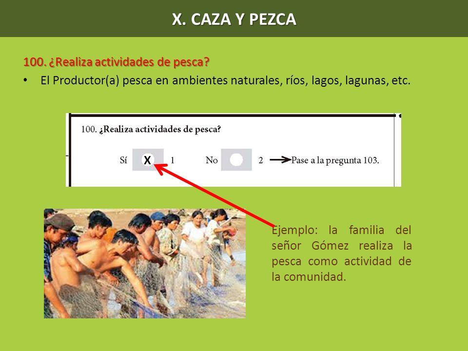 X. CAZA Y PEZCA 100. ¿Realiza actividades de pesca? El Productor(a) pesca en ambientes naturales, ríos, lagos, lagunas, etc. X Ejemplo: la familia del