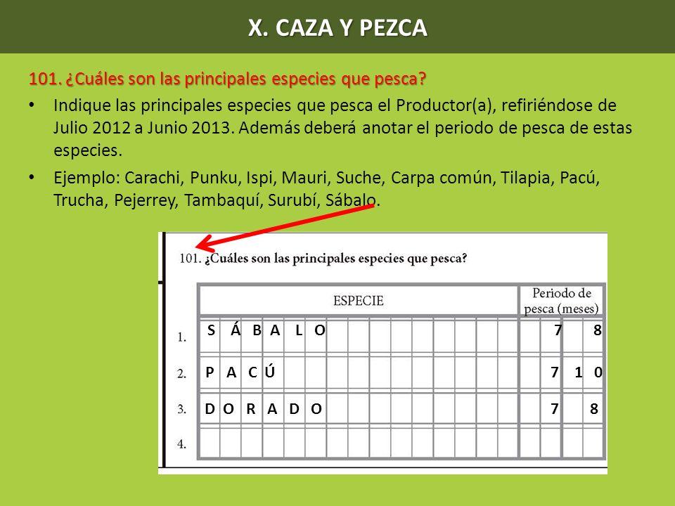 X. CAZA Y PEZCA 101. ¿Cuáles son las principales especies que pesca? Indique las principales especies que pesca el Productor(a), refiriéndose de Julio