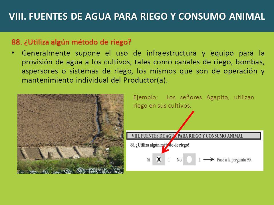 VIII.FUENTES DE AGUA PARA RIEGO Y CONSUMO ANIMAL 89.