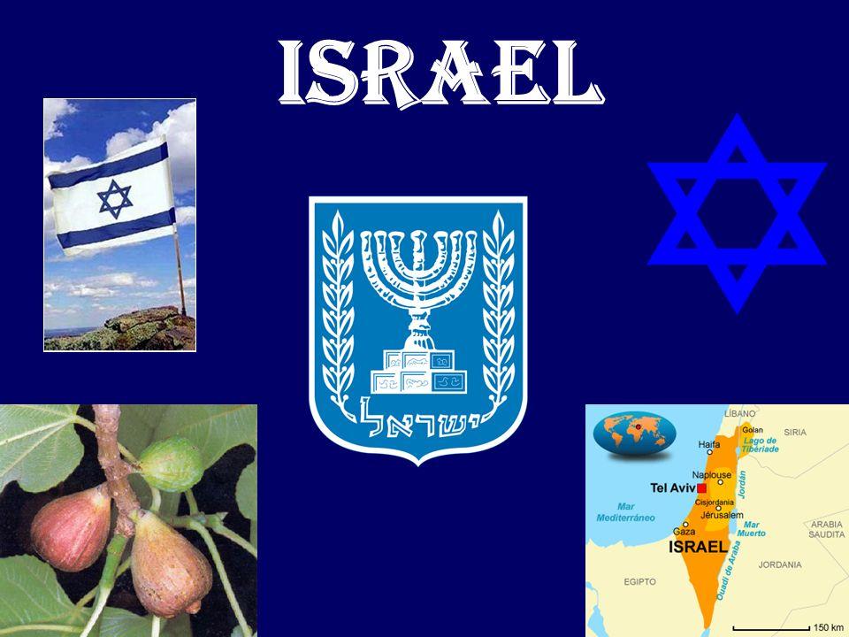 Nuestro objetivo es simplemente la liberación del suelo palestino y el establecimiento de un estado.