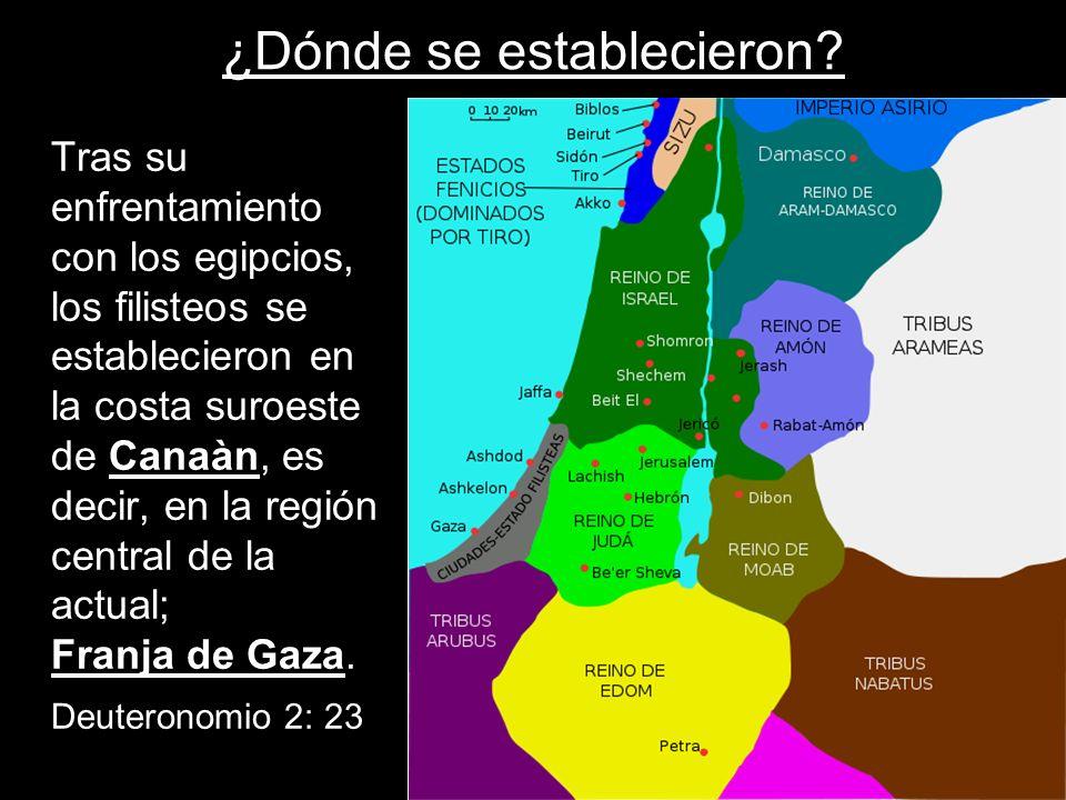 ¿Dónde se establecieron? Tras su enfrentamiento con los egipcios, los filisteos se establecieron en la costa suroeste de Canaàn, es decir, en la regió