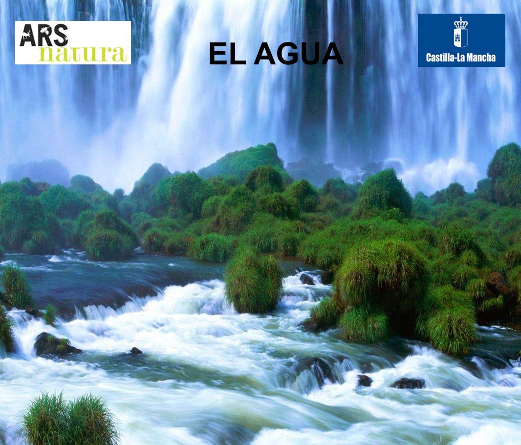 Mientras tanto, el agua escasea en muchos lugares de La Tierra.
