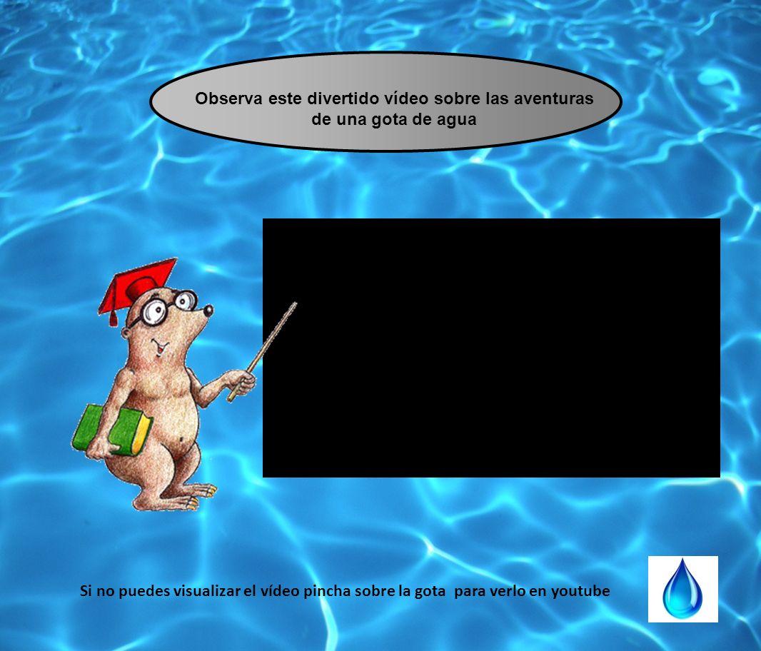 Observa este divertido vídeo sobre las aventuras de una gota de agua Si no puedes visualizar el vídeo pincha sobre la gota para verlo en youtube
