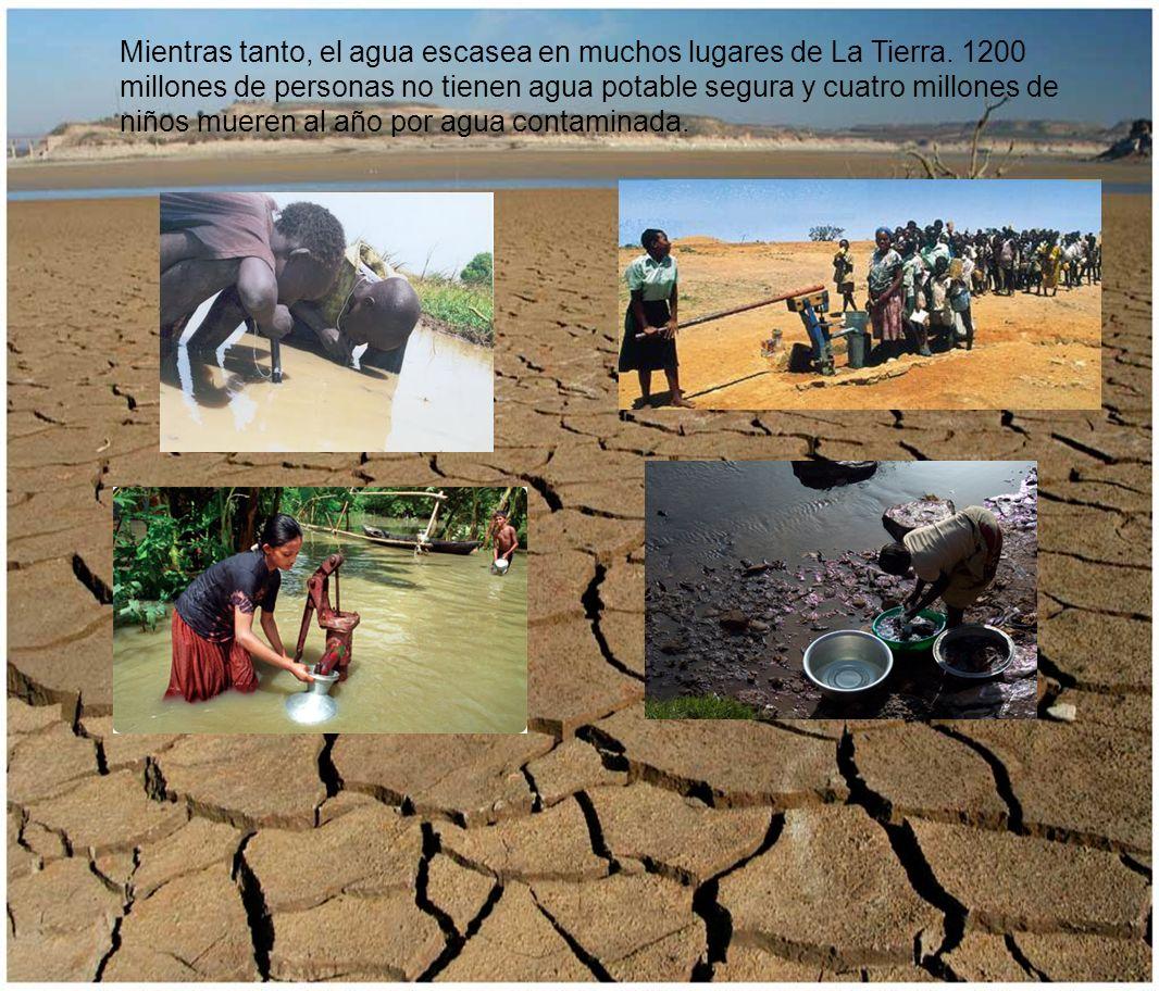 Mientras tanto, el agua escasea en muchos lugares de La Tierra. 1200 millones de personas no tienen agua potable segura y cuatro millones de niños mue