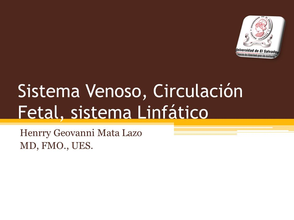 Sistema Venoso, Circulación Fetal, sistema Linfático Henrry Geovanni Mata Lazo MD, FMO., UES.