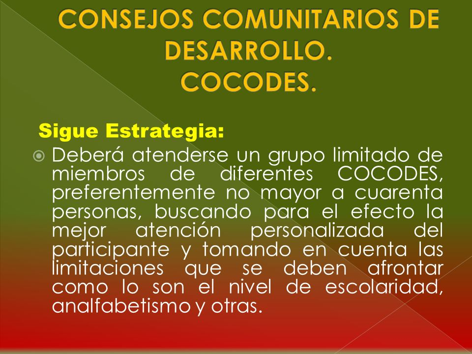 Estrategia para la Formación y Capacitación en Educación para Miembros de COCODES: La persona responsable de llevar a cabo la Formación y Capacitación