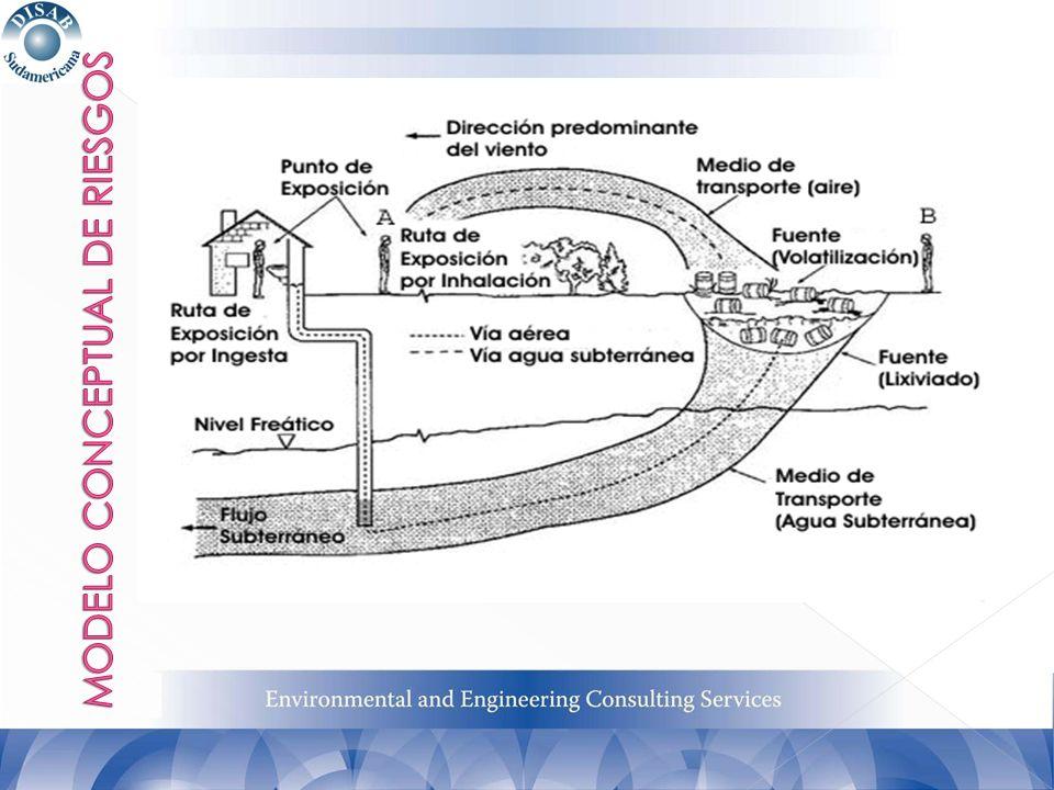 En base a las características de los productos involucrados, los líquidos bombeados desde los pozos son conducidos hacia un tanque de venteo (flash tank) y posteriormente a separadores gravitacionales, con asistencia de filtros coalescentes con el fin de lograr la separación de la FLNA respecto de la fase acuosa, para consecuentemente derivar la fase acuosa separada, con potencial presencia de solubilizados hacia un tren de tratamiento conformado por un air stripper y filtros de carbón activado.