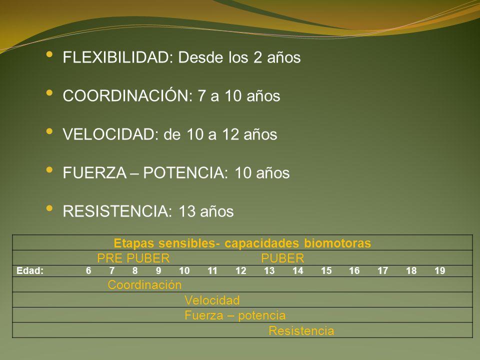 FLEXIBILIDAD: Desde los 2 años COORDINACIÓN: 7 a 10 años VELOCIDAD: de 10 a 12 años FUERZA – POTENCIA: 10 años RESISTENCIA: 13 años Etapas sensibles- capacidades biomotoras PRE PUBER PUBER Edad: 6 7 8 9 10 11 12 13 14 15 16 17 18 19 Coordinación Velocidad Fuerza – potencia Resistencia