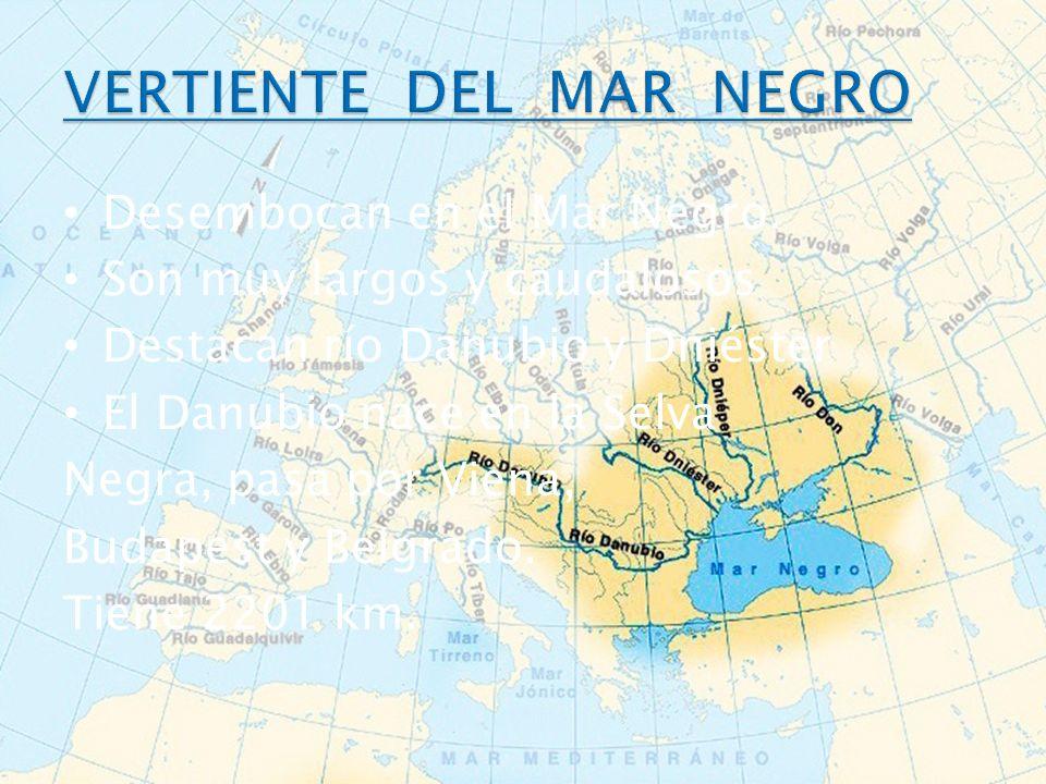 Desembocan en el Mar Negro. Son muy largos y caudalosos Destacan río Danubio y Dniéster El Danubio nace en la Selva Negra, pasa por Viena, Budapest y