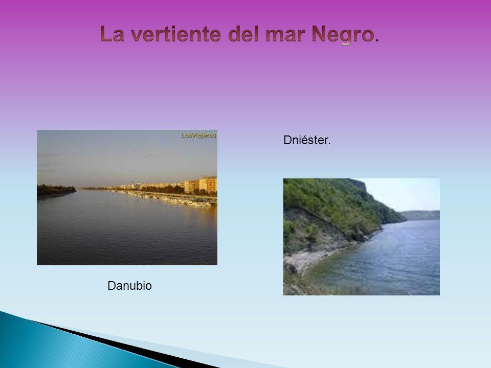 Danubio Dniéster.