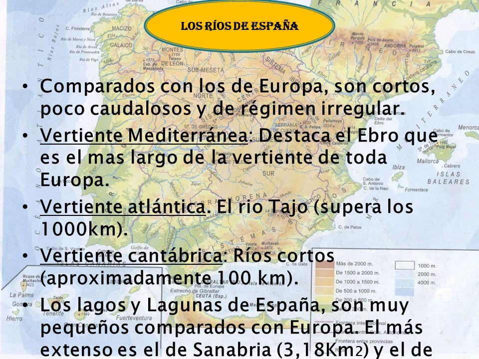 Vertiente Atlántica: Los ríos de esta vertiente son los más caudalosos de Europa porque atraviesan zonas con abundantes lluvias. El río más largo de e