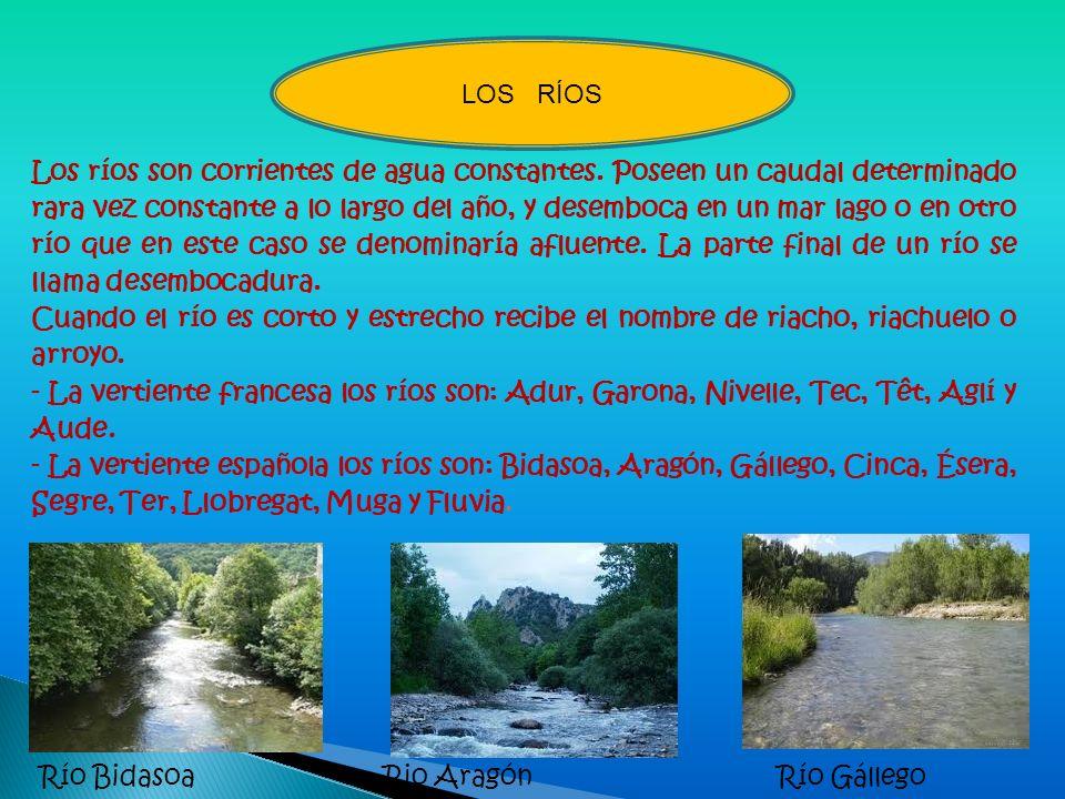 Los ríos son corrientes de agua constantes. Poseen un caudal determinado rara vez constante a lo largo del año, y desemboca en un mar lago o en otro r
