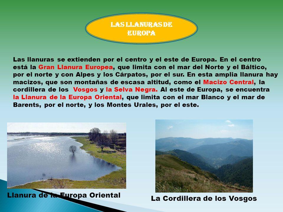 Las llanuras se extienden por el centro y el este de Europa. En el centro está la Gran Llanura Europea, que limita con el mar del Norte y el Báltico,