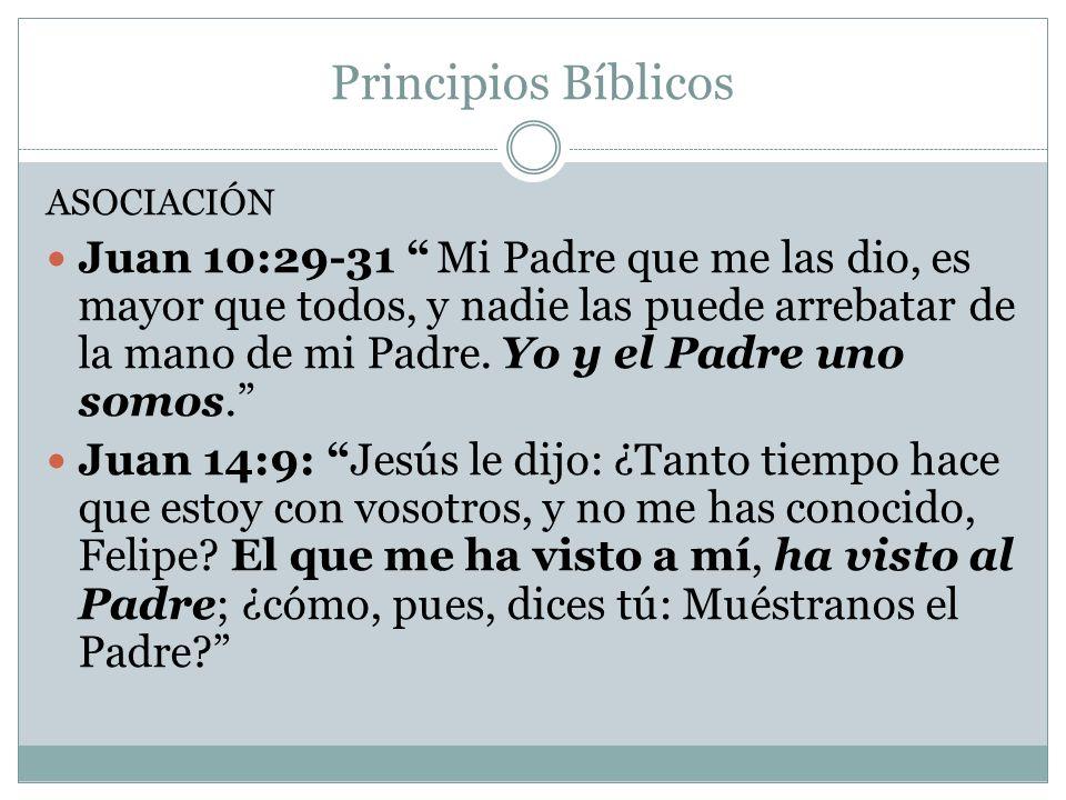 Principios Bíblicos ASOCIACIÓN Juan 10:29-31 Mi Padre que me las dio, es mayor que todos, y nadie las puede arrebatar de la mano de mi Padre. Yo y el