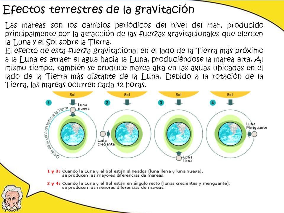 Las mareas son los cambios periódicos del nivel del mar, producido principalmente por la atracción de las fuerzas gravitacionales que ejercen la Luna