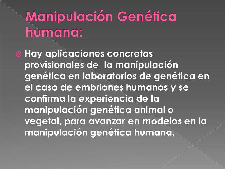 Hay aplicaciones concretas provisionales de la manipulación genética en laboratorios de genética en el caso de embriones humanos y se confirma la experiencia de la manipulación genética animal o vegetal, para avanzar en modelos en la manipulación genética humana.
