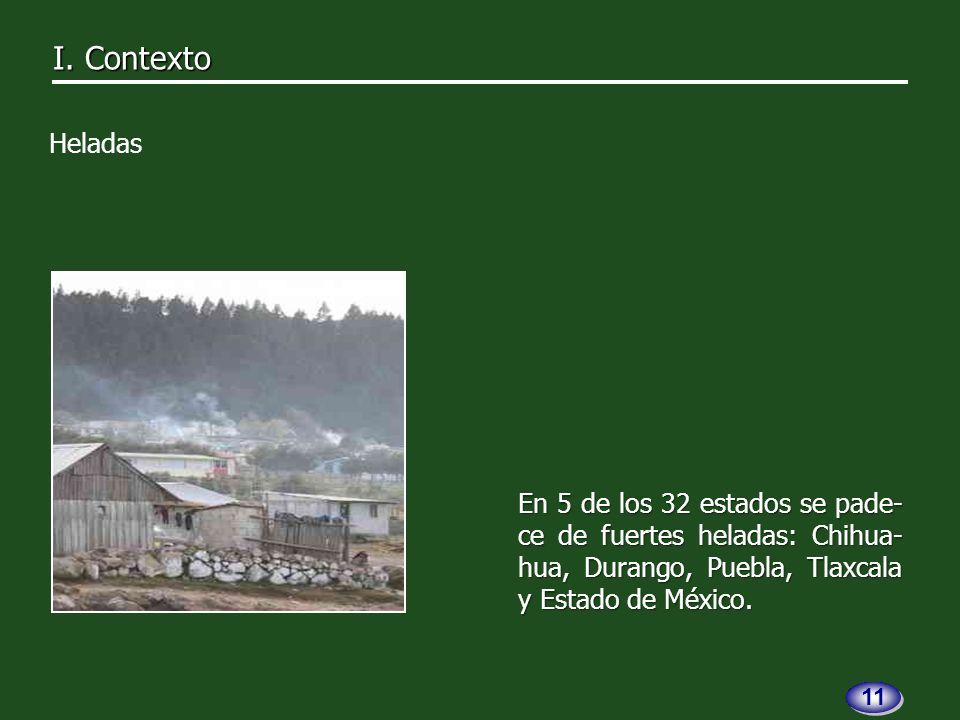 En 5 de los 32 estados se pade- ce de fuertes heladas: Chihua- hua, Durango, Puebla, Tlaxcala y Estado de México.