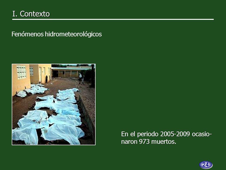 En el periodo 2005-2009 ocasio- naron 973 muertos En el periodo 2005-2009 ocasio- naron 973 muertos.