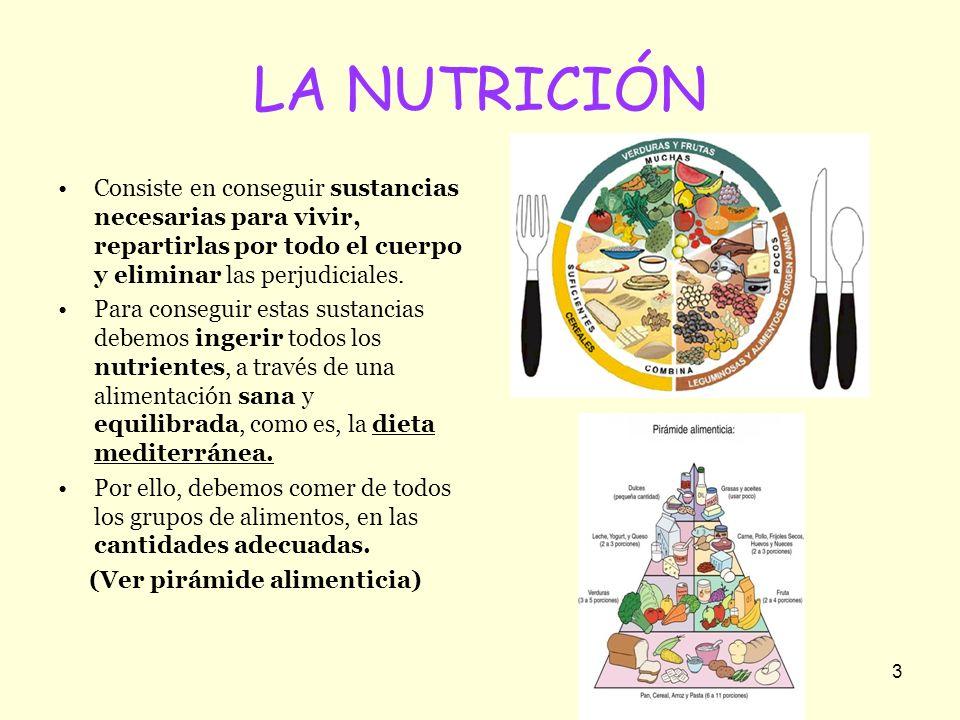 3 LA NUTRICIÓN Consiste en conseguir sustancias necesarias para vivir, repartirlas por todo el cuerpo y eliminar las perjudiciales. Para conseguir est