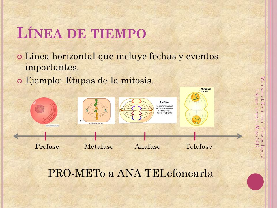 L ÍNEA DE TIEMPO Línea horizontal que incluye fechas y eventos importantes. Ejemplo: Etapas de la mitosis. Montserrat Escauriza - Psicopedagoga - Cole