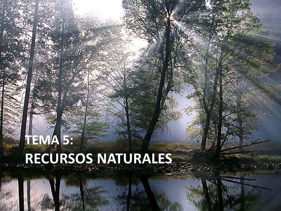 3.CLASIFICACIÓN DE RECURSOS NATURALES RECURSOS ENERGÉTICOS Energías renovables 6.