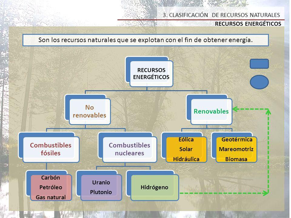 2.TIPOS DE RECURSOS NATURALES 1.
