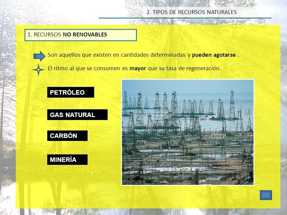 2.TIPOS DE RECURSOS NATURALES 2.
