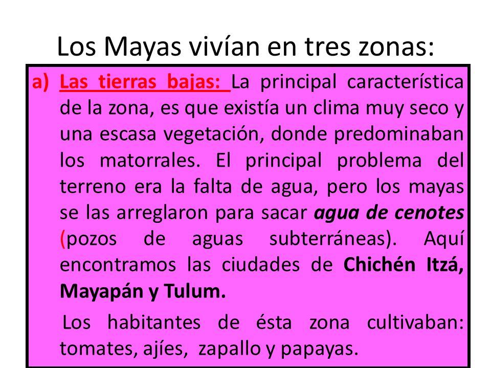 Los Mayas vivían en tres zonas: a)Las tierras bajas: La principal característica de la zona, es que existía un clima muy seco y una escasa vegetación,