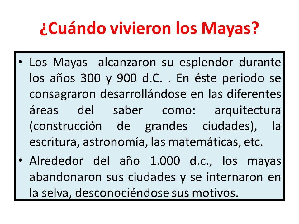 ¿Cuándo vivieron los Mayas? Los Mayas alcanzaron su esplendor durante los años 300 y 900 d.C.. En éste periodo se consagraron desarrollándose en las d