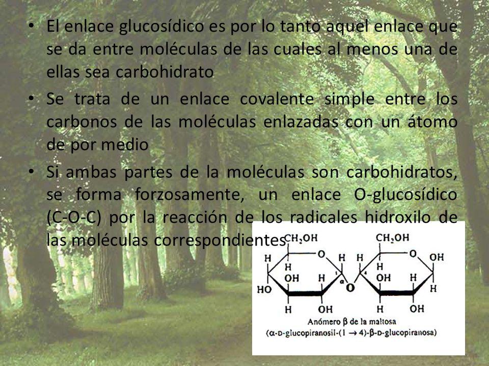El enlace glucosídico es por lo tanto aquel enlace que se da entre moléculas de las cuales al menos una de ellas sea carbohidrato Se trata de un enlac