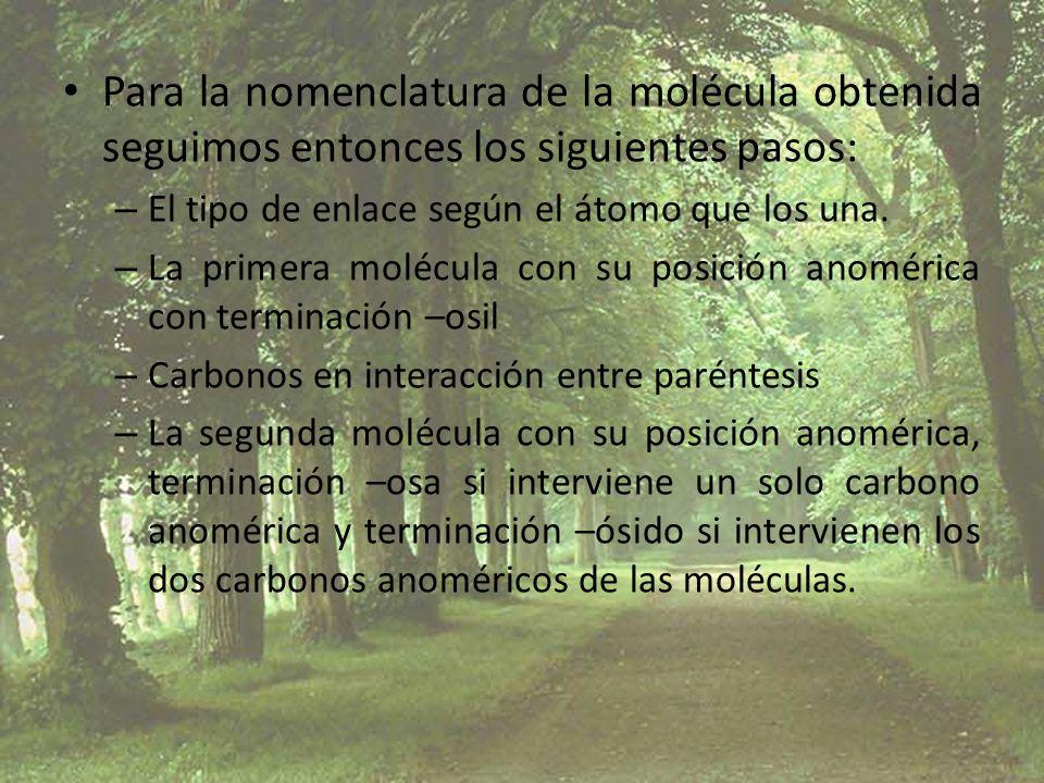 Para la nomenclatura de la molécula obtenida seguimos entonces los siguientes pasos: – El tipo de enlace según el átomo que los una. – La primera molé