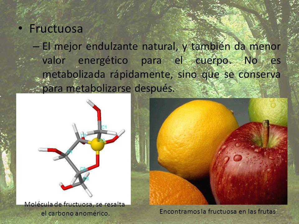 Fructuosa – El mejor endulzante natural, y también da menor valor energético para el cuerpo. No es metabolizada rápidamente, sino que se conserva para