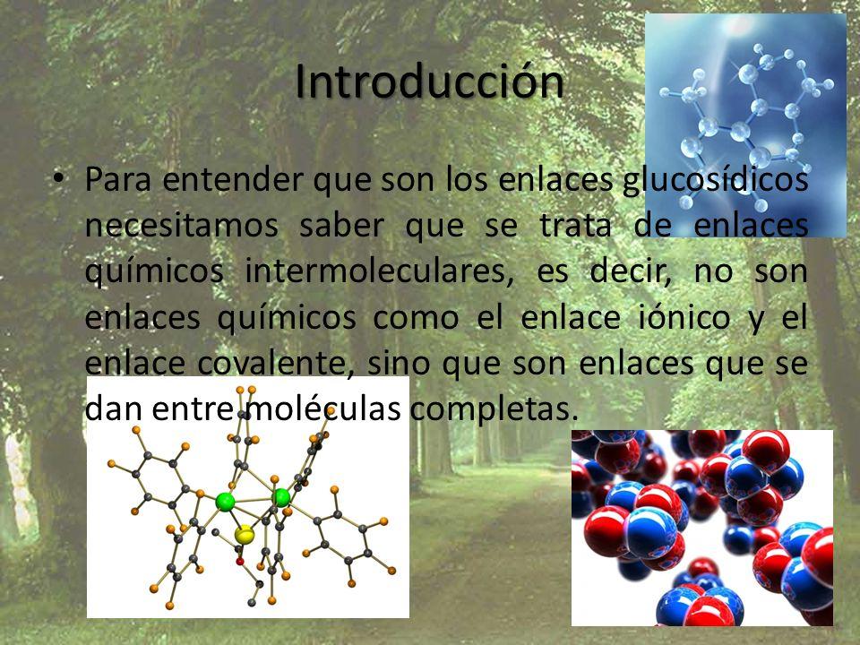 Introducción Para entender que son los enlaces glucosídicos necesitamos saber que se trata de enlaces químicos intermoleculares, es decir, no son enla