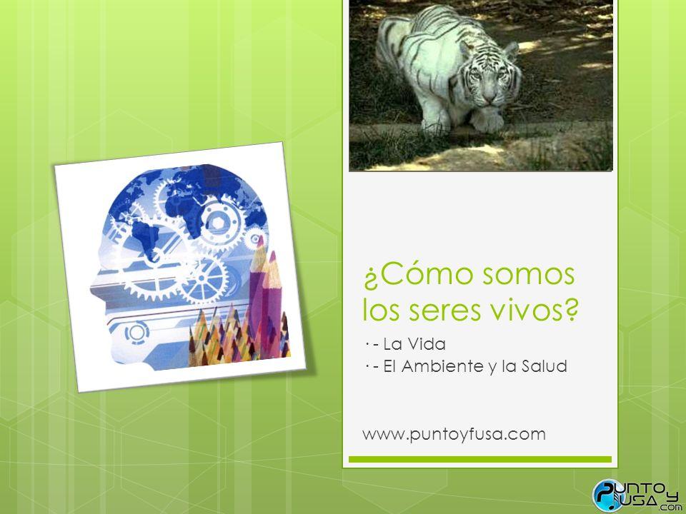¿Cómo somos los seres vivos? · - La Vida · - El Ambiente y la Salud www.puntoyfusa.com