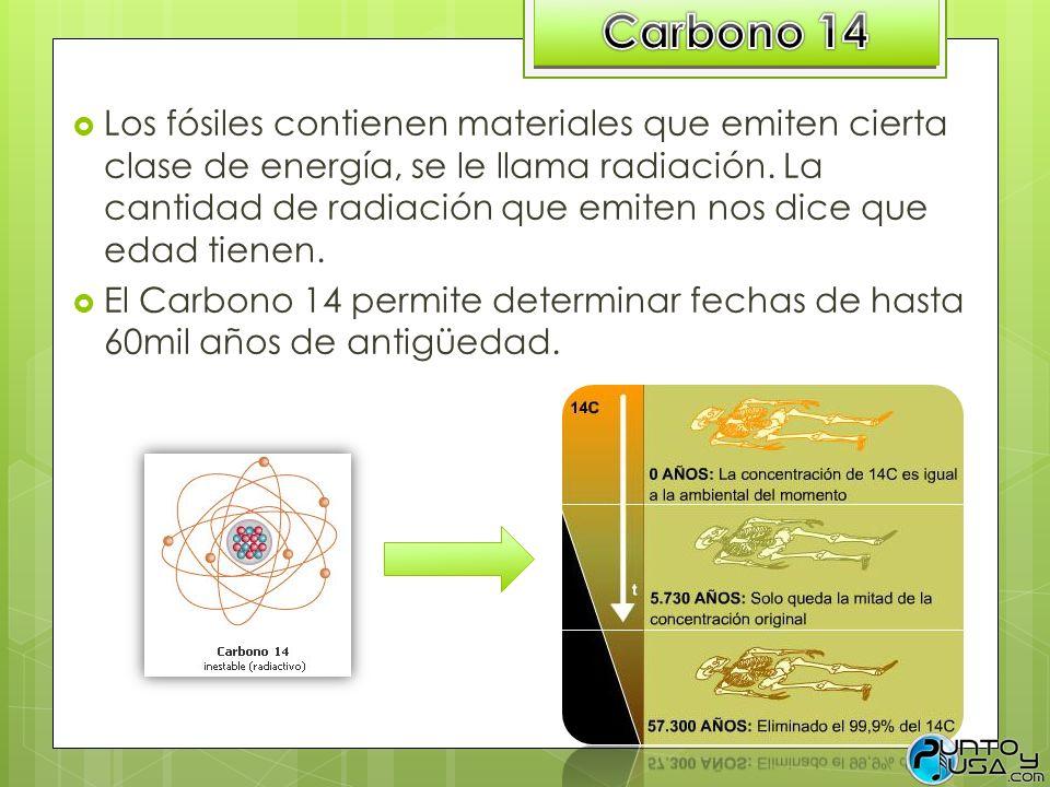 Los fósiles contienen materiales que emiten cierta clase de energía, se le llama radiación. La cantidad de radiación que emiten nos dice que edad tien