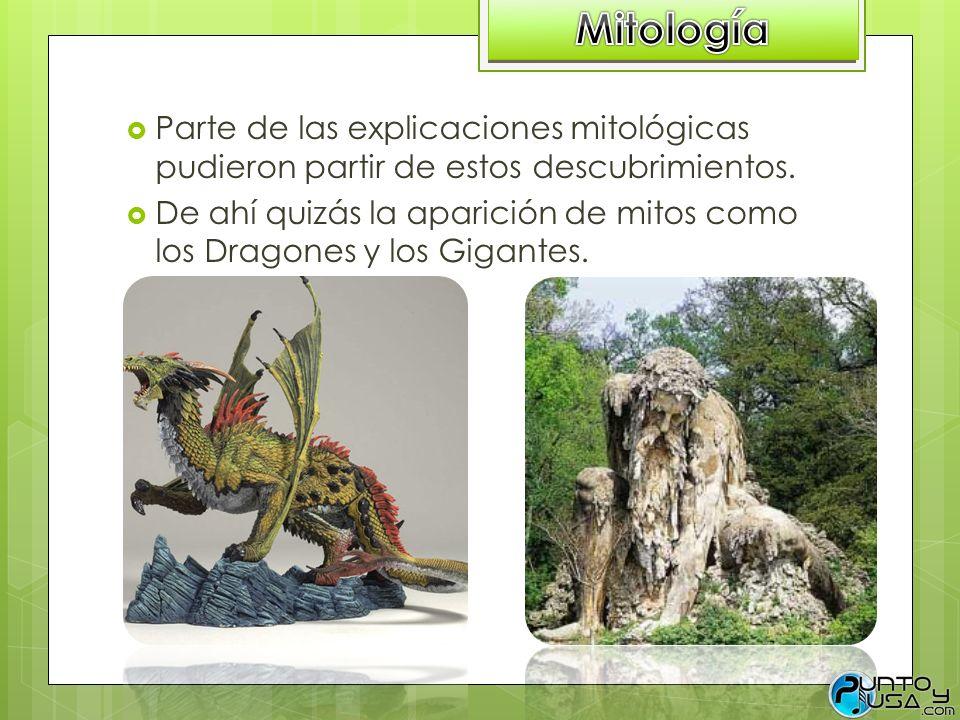 Parte de las explicaciones mitológicas pudieron partir de estos descubrimientos. De ahí quizás la aparición de mitos como los Dragones y los Gigantes.