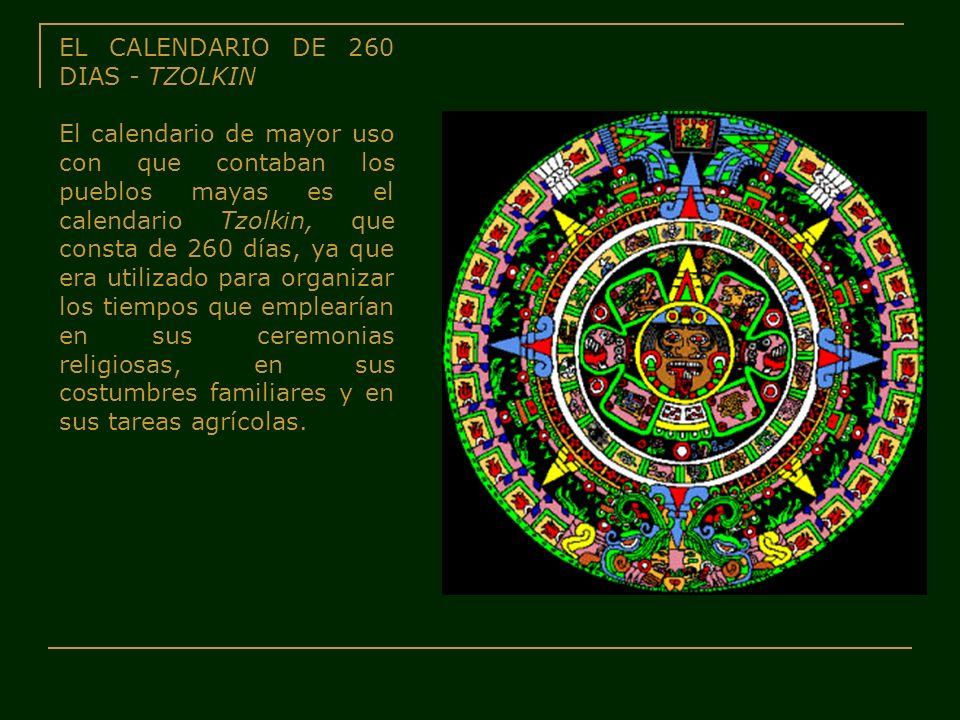 EL CALENDARIO DE 260 DIAS - TZOLKIN El calendario de mayor uso con que contaban los pueblos mayas es el calendario Tzolkin, que consta de 260 días, ya