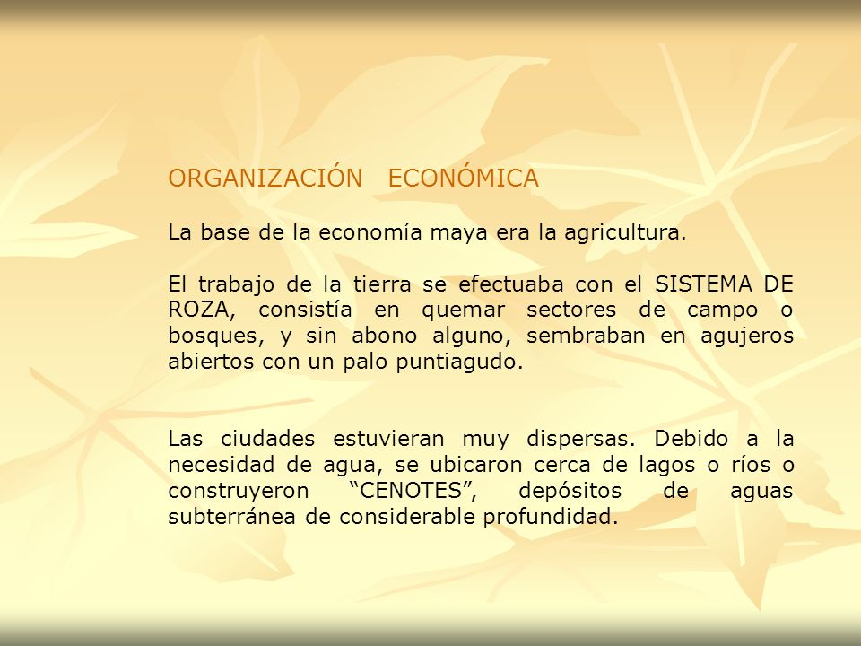 ORGANIZACIÓN ECONÓMICA La base de la economía maya era la agricultura. El trabajo de la tierra se efectuaba con el SISTEMA DE ROZA, consistía en quema